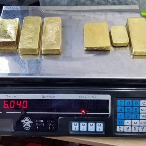 Зургаан кг алт хууль бусаар хил давуулах гэж байсныг илрүүлжээ