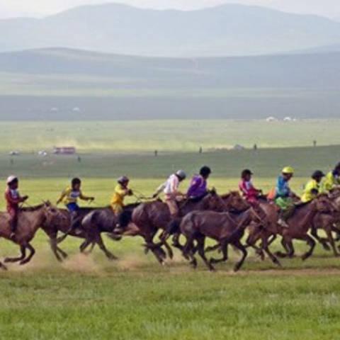 Зургаан насны морьдын уралдааны үеэр нийт 30 хүүхэд мориноосоо унажээ