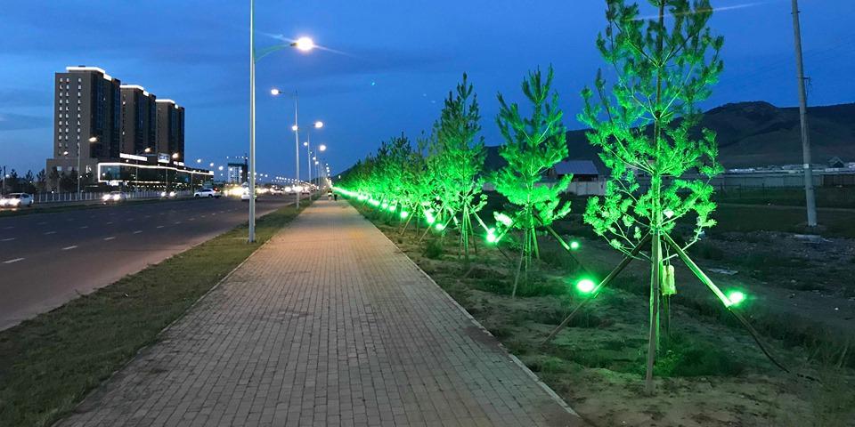 Нисэхийн зам дагуух моддыг ногоон лэд гэрлээр гэрэлтүүлжээ