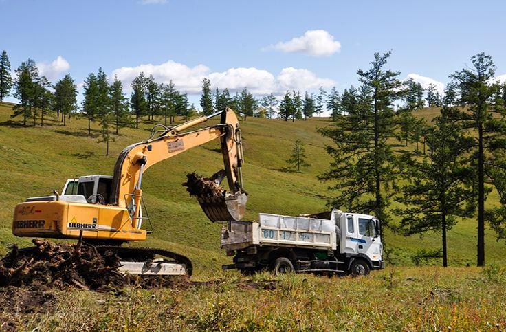 Баян-Өндөр уулыг модны хожуулаас цэвэрлэж байна
